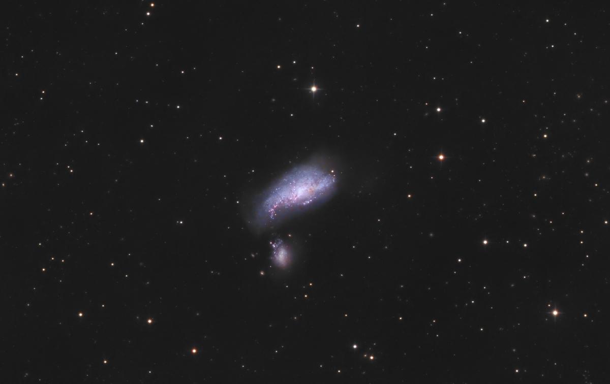 NGC_4490.jpg